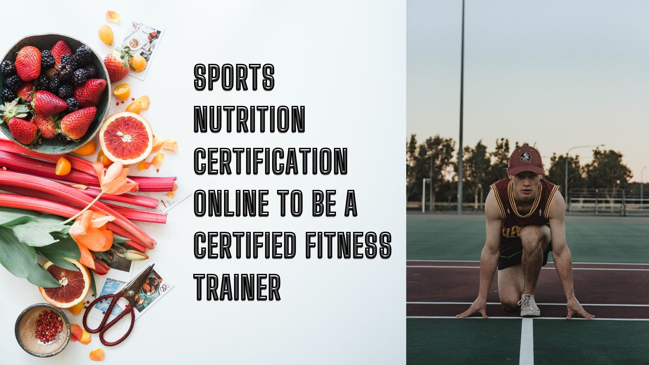 Sports Nutrition Certification Online